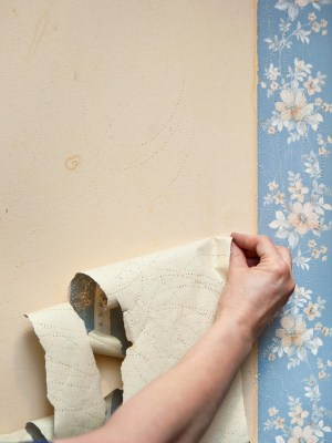 Wallpaper removal by Affordable Painting and Papering LLC.